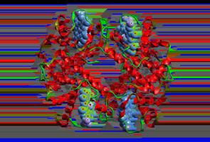 Avogadro - Free cross-platform molecular editor - Avogadro