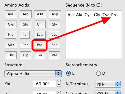 Building a Peptide - Avogadro